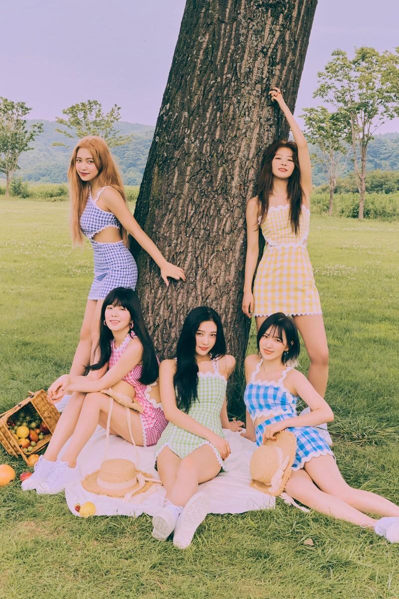Việc Red Velvet đạo nhái trang phục đã được giải quyết? - ảnh 1