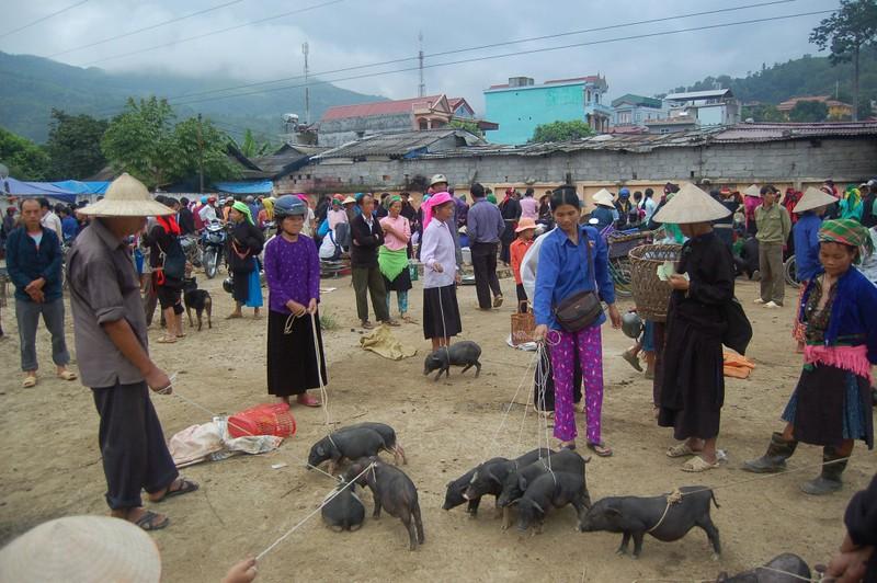 Đi du lịch Hà Giang phải check in ngay những địa điểm này - ảnh 10