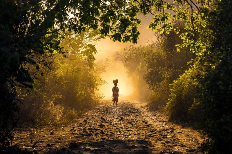 Những cảnh vật thiên nhiên lạ mắt chỉ có ở Madagascar  - ảnh 13