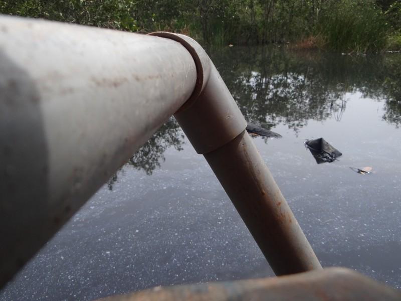 Bắt quả tang công ty thuộc da xả nước thải đen ngòm - ảnh 1