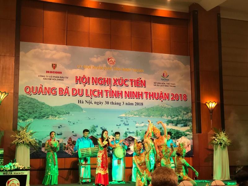 Ninh Thuận sắp có nhiều dự án du lịch 'khủng' - ảnh 1
