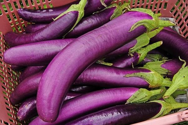 Những lợi ích đáng ngạc nhiên của cà tím | Ăn sạch sống khỏe | PLO