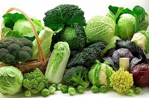 Những thực phẩm giúp tránh tình trạng loãng xương - ảnh 1