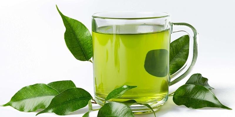 Trà xanh có thể giúp chống lại dị ứng thực phẩm - ảnh 1