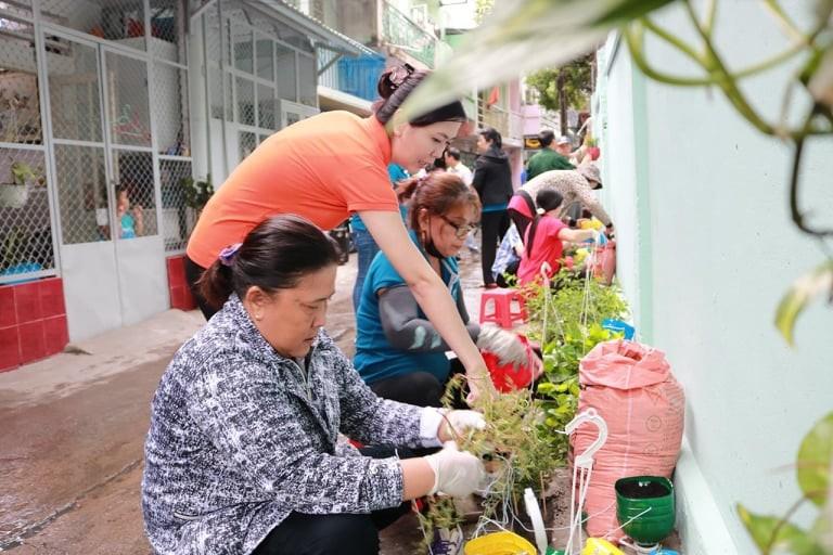 Sử dụng lại chai nhựa để trồng cây - ảnh 1