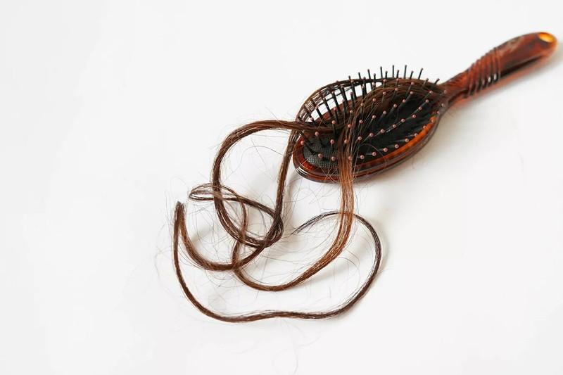 Tóc người có thể biến thành phân bón và thức ăn động vật - ảnh 1