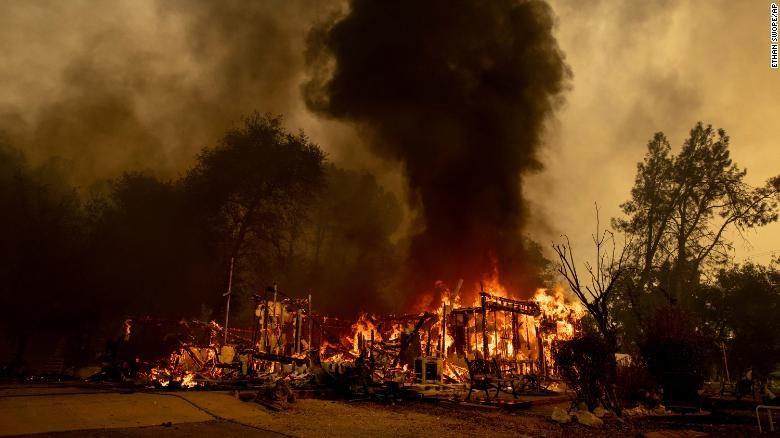 Nhóm lửa nấu nước làm cháy rừng, khả năng phải ngồi tù 9 năm  - ảnh 2
