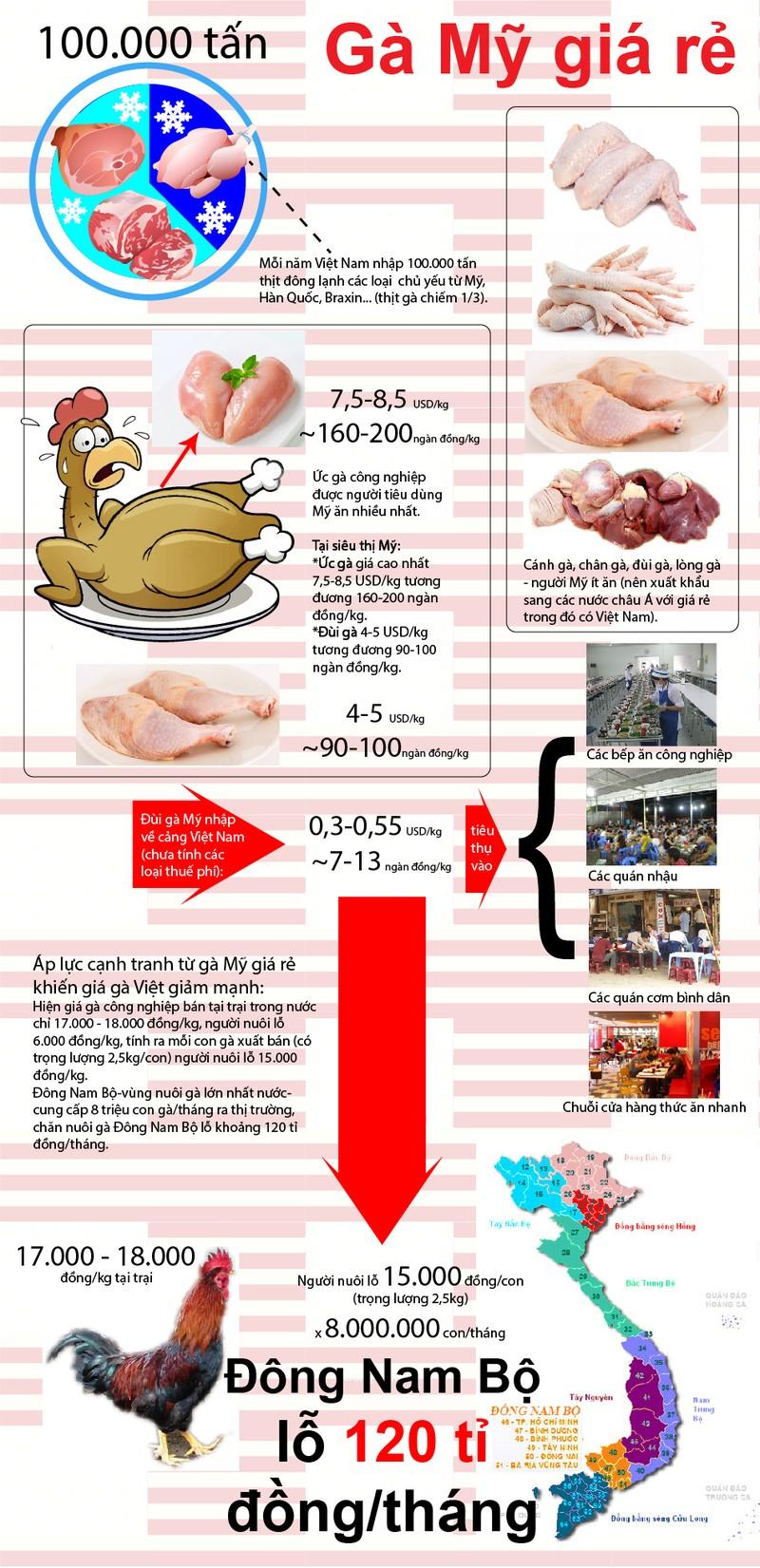 Truy tìm giám đốc nhập đùi gà Mỹ siêu rẻ… 2.000 đồng/kg - ảnh 1