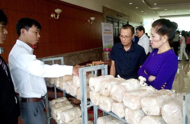 Việt kiều 'hiến kế' giúp TP.HCM trồng rau kiểu Nhật - ảnh 1