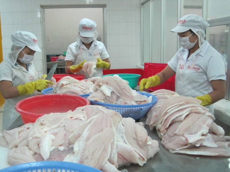 Sốc: Mỹ áp mức thuế cao khủng khiếp lên cá tra Việt Nam - ảnh 1
