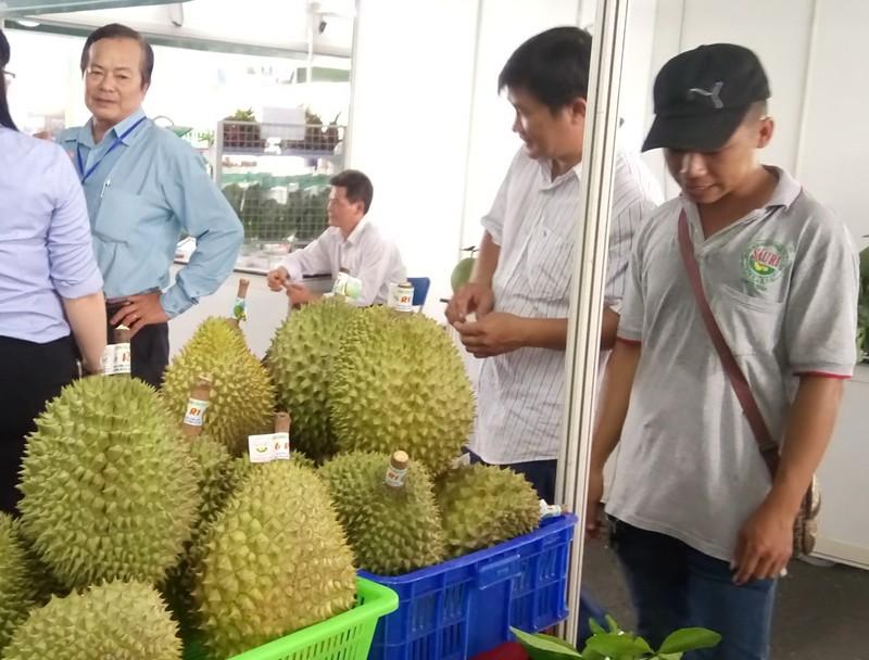 Thái Lan 'mượn' Việt Nam bán nửa tỉ USD trái cây sang TQ   - ảnh 1