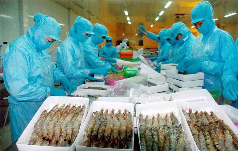 Trung Quốc tăng nuôi tôm, Việt Nam vẫn có cơ hội xuất khẩu lớn - ảnh 1