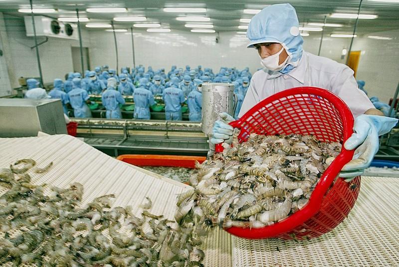Sốc: Hàng Việt đối diện với 154 vụ kiện từ nhiều nước  - ảnh 1