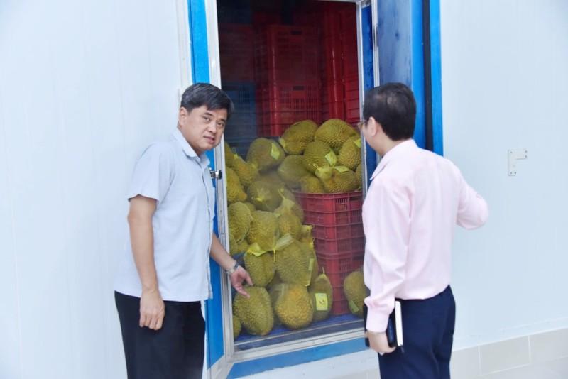 'Vua' bán trái cây sang Mỹ giải cứu thanh long - ảnh 2