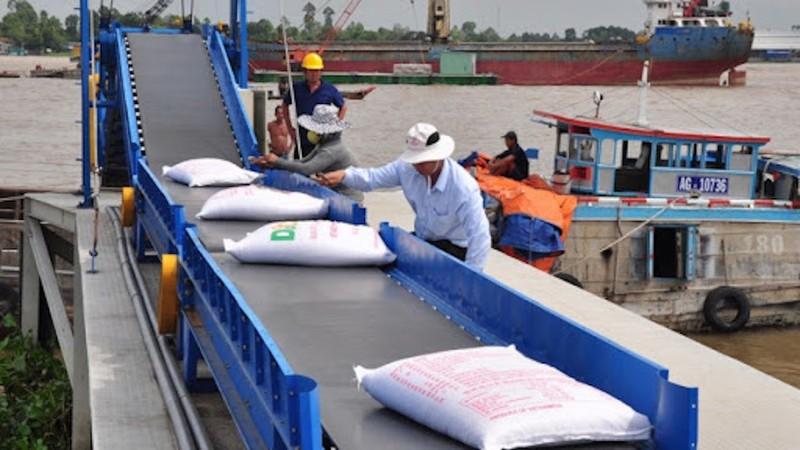 Nóng: Chính thức đề xuất Thủ tướng cho xuất khẩu gạo trở lại - ảnh 3