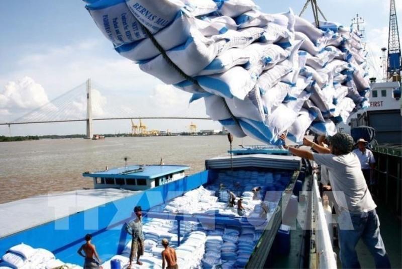 Mới: Phải cho xuất khẩu gạo bình thường, bỏ ngay hạn ngạch  - ảnh 1