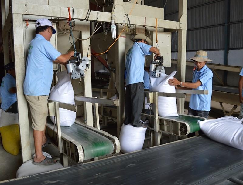 Trung Quốc tăng mua gạo, giấy... từ Việt Nam - ảnh 1