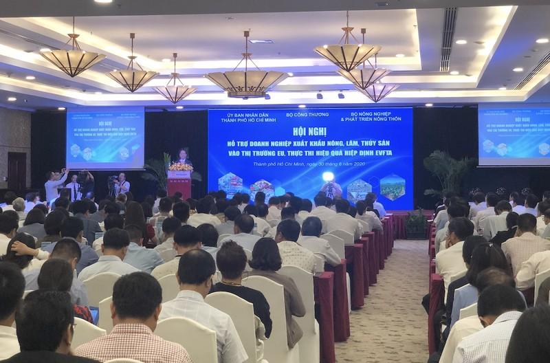 Sẽ lập sàn thương mại điện tử xuất khẩu hàng Việt sang EU - ảnh 2