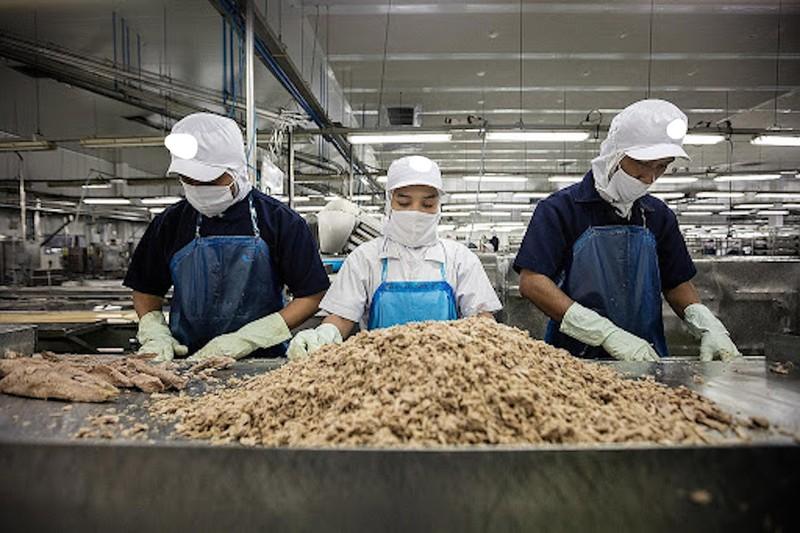 Người Mỹ, EU thích ăn cá ngừ, tôm tẩm bột Việt Nam  - ảnh 1