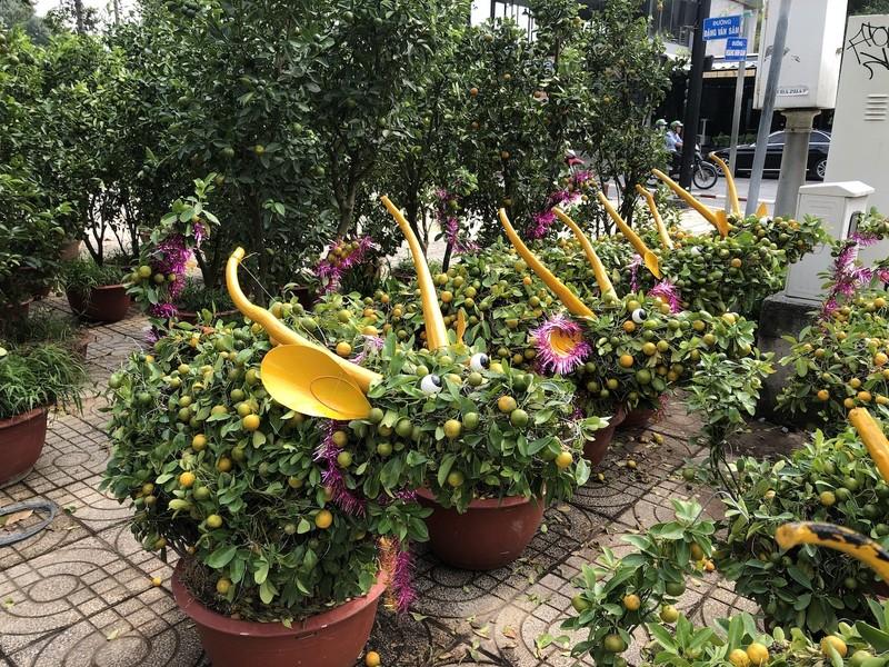 Tắc trâu vàng, tắc bonsai tạo hình kỳ công đắt khách - ảnh 2