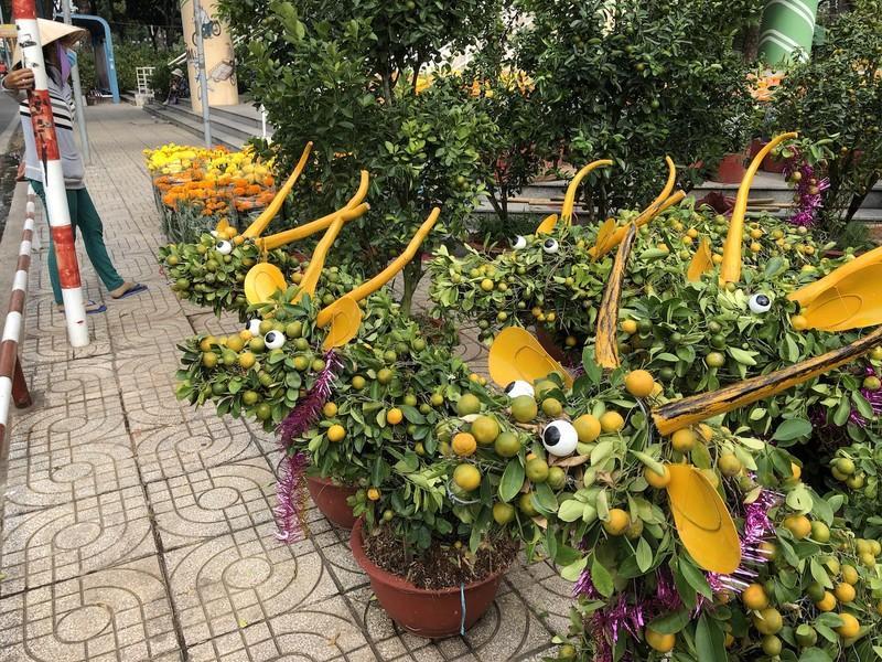 Tắc trâu vàng, tắc bonsai tạo hình kỳ công đắt khách - ảnh 1