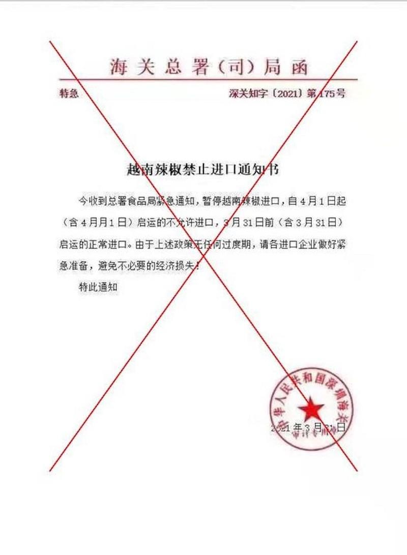 Thực hư Trung Quốc cấm nhập ớt từ Việt Nam   - ảnh 1