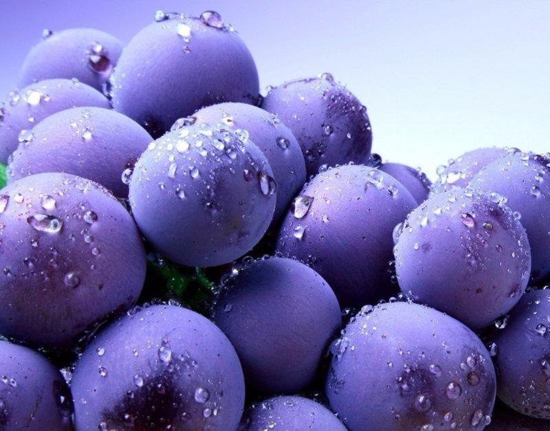 Thực phẩm màu tím và những lợi ích không ngờ - ảnh 1