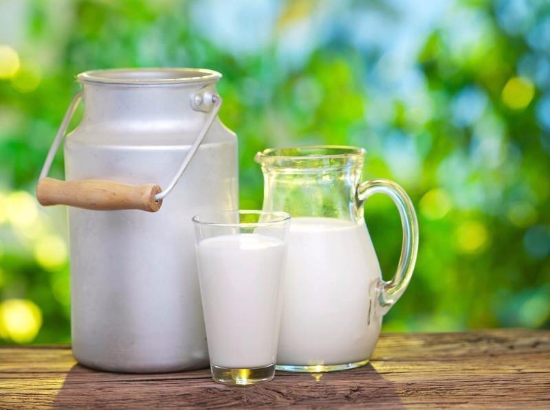 Người lớn khỏe mạnh có cần uống sữa? - ảnh 1