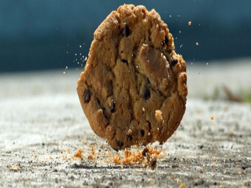 Sự thật về 'quy tắc 5s' của đồ ăn rơi xuống đất? - ảnh 1