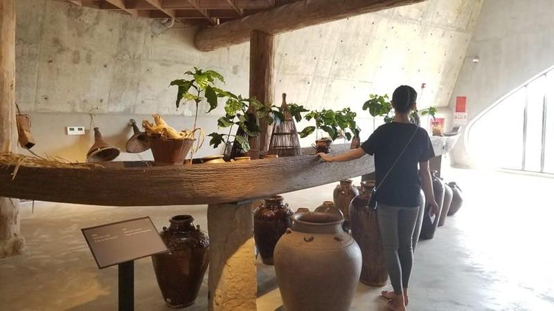 Bảo tàng cà phê độc nhất ở Đắk Lắk có gì? - ảnh 8