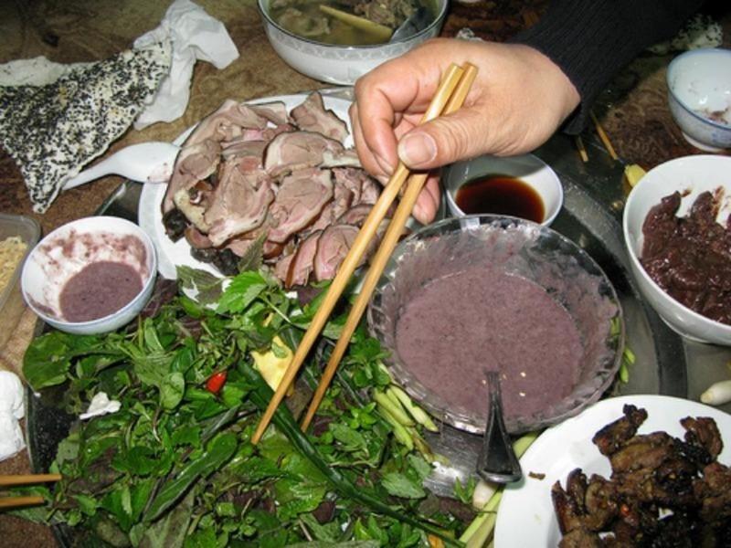 4 nhóm tình trạng sức khỏe không nên ăn thịt chó - ảnh 1