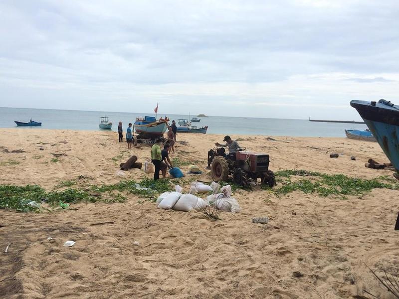 Dân đảo Phú Quý hạ cây, neo thuyền... chờ bão số 9  - ảnh 3