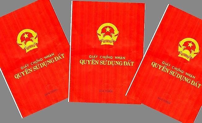 Bình Thuận yêu cầu kiểm tra việc cấp giấy đỏ cho người thuê - ảnh 1