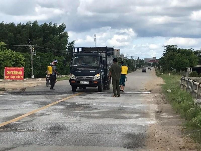 Bình Thuận tiêu hủy 865 con heo mắc dịch tả heo châu Phi - ảnh 2