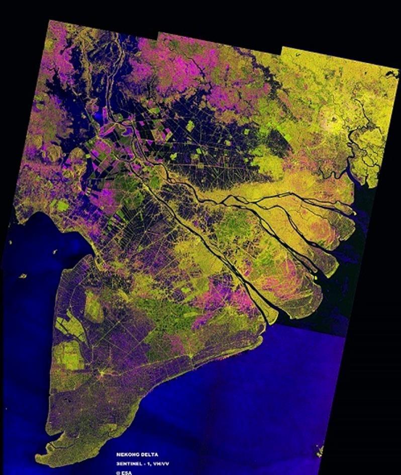 Giám sát tình trạng phá rừng bằng ảnh vệ tinh  - ảnh 2