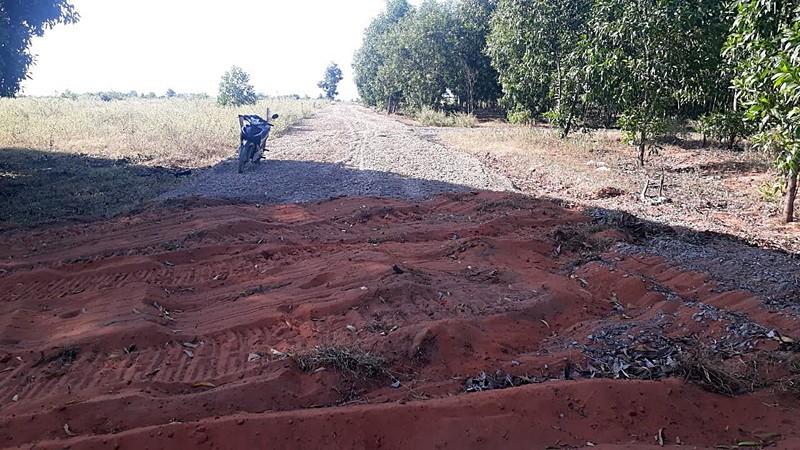 Gần 2 km đường nhựa 'mọc' trên đất nông nghiệp - ảnh 2