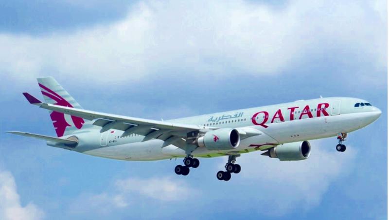 Thêm 7 du khách nước ngoài trên chuyến bay QR970 được cách ly  - ảnh 1