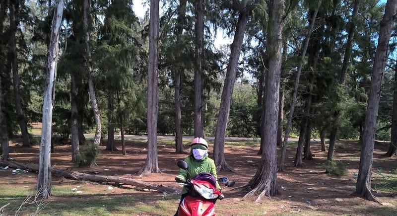Không chuyển mục đích rừng phòng hộ giao cho dự án du lịch - ảnh 1