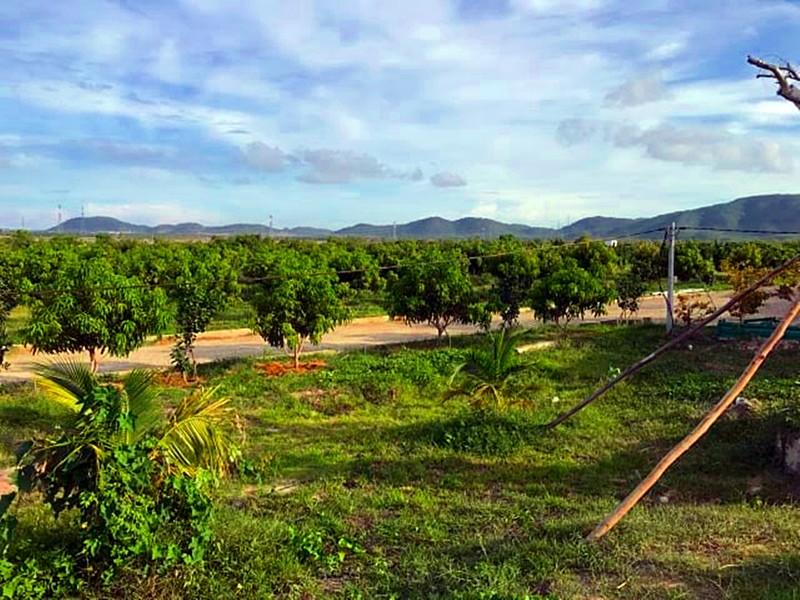 Tỉnh Bình Thuận từng yêu cầu thu hồi dự án 32 đồng/m2 - ảnh 1