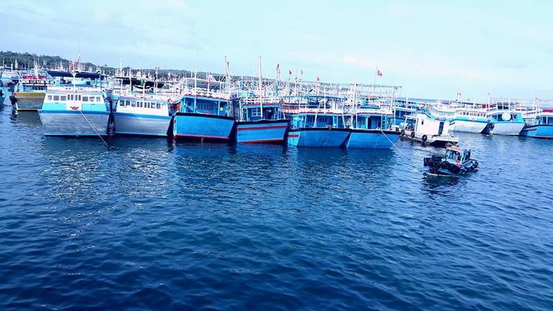 Đảo Phú Quý, điểm du lịch hấp dẫn phải đến ở Bình Thuận - ảnh 2