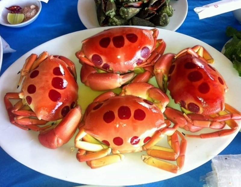 Đảo Phú Quý, điểm du lịch hấp dẫn phải đến ở Bình Thuận - ảnh 9