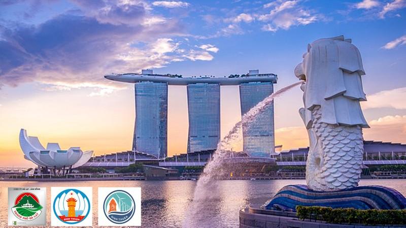 Kết nối doanh nghiệp Singapore và 3 tỉnh Nam Trung Bộ - ảnh 1