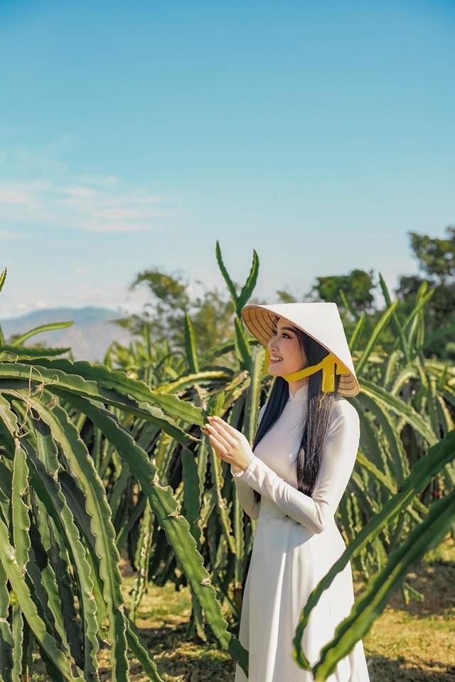 Cô gái trồng thanh long tham dự cuộc thi hoa hậu quốc tế - ảnh 14