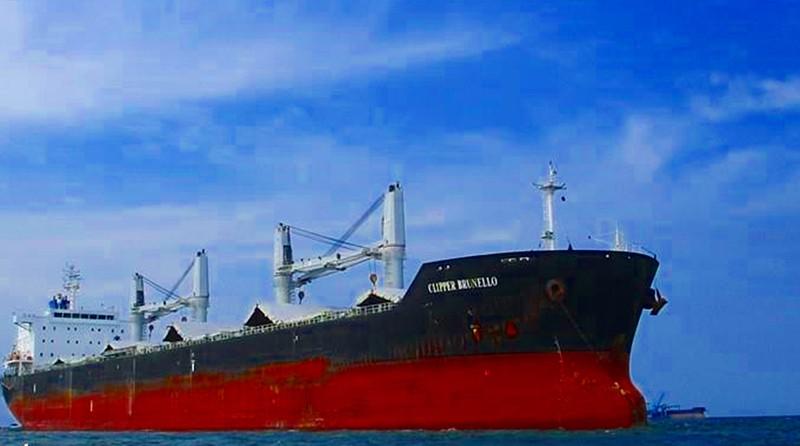 Giám sát không cho 16 thuyền viên nước ngoài lên bờ - ảnh 1