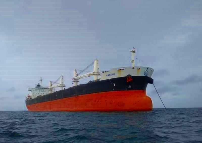 Giám sát không cho 21 thuyền viên trên tàu Karimu lên bờ - ảnh 1