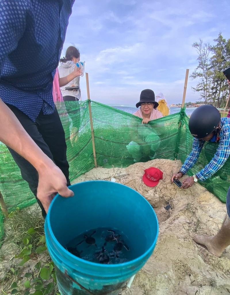 Bảo vệ nghiêm ngặt đưa 45 chú rùa tí hon về đại dương - ảnh 6