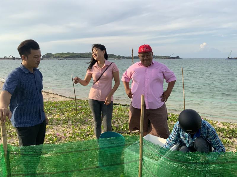 Bảo vệ nghiêm ngặt đưa 45 chú rùa tí hon về đại dương - ảnh 1