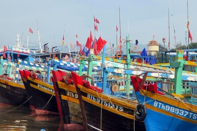 Bình Thuận triển khai ứng phó khẩn cấp bão số 9 - ảnh 1