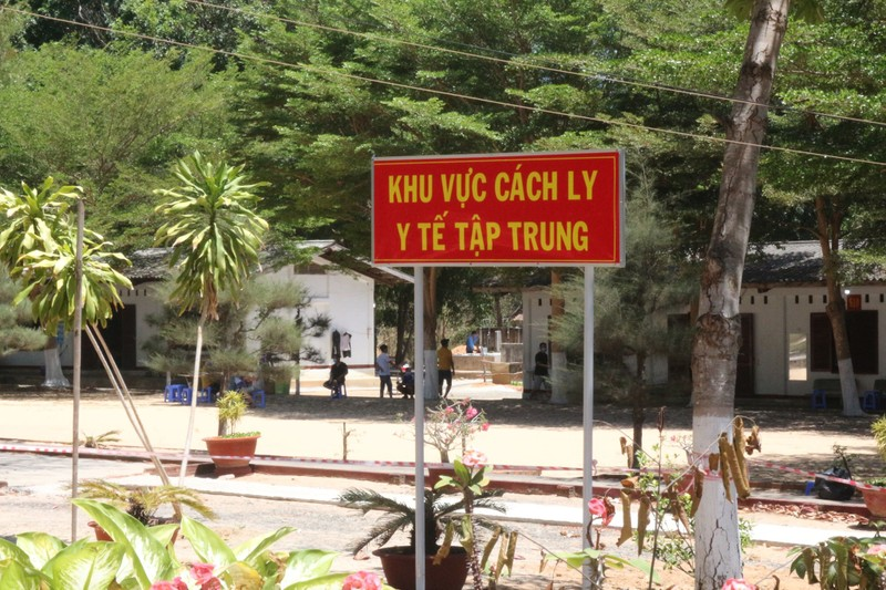 Bình Thuận: Một người bị xử phạt vì chậm khai báo   - ảnh 1
