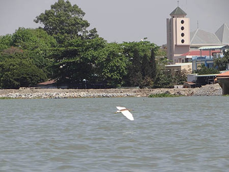 Cảnh lấp sông Đồng Nai trước giờ tạm ngưng - ảnh 2